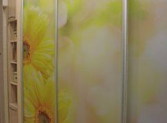 Шкаф-купе двери фотопечать цветы